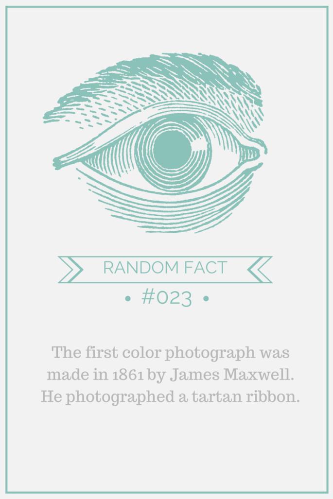 art fact #23