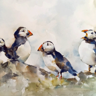 "Puffins. Michele Clamp. Watercolour 11""x14"""