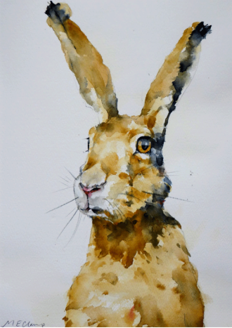 "Hare Today. Michele Clamp. Watercolour 14""x11"""